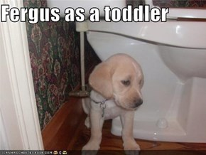 Fergus as a toddler