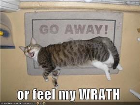 or feel my WRATH
