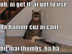 oh, ai get it. ai get to use  da hammr cuz ai cant  hit mai thumbs. ha ha