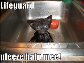 Lifeguard  pleeze halp mee!