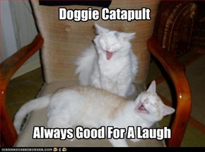 Doggie Catapult