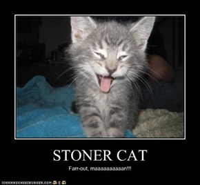 STONER CAT