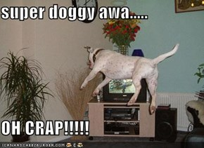 super doggy awa.....  OH CRAP!!!!!