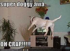 super doggy awa.....  OH CRAP!!!!!