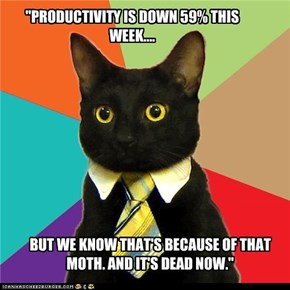 """PRODUCTIVITY IS DOWN 59% THIS WEEK...."