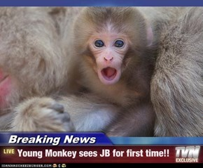 Breaking News - Young Monkey sees JB for first time!!