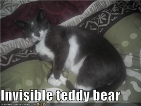 Invisible teddy bear