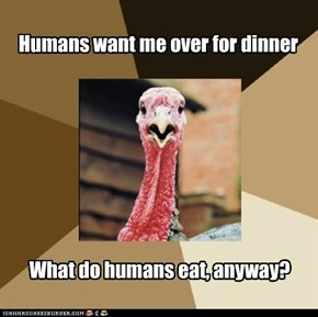 Humans want me over for dinner
