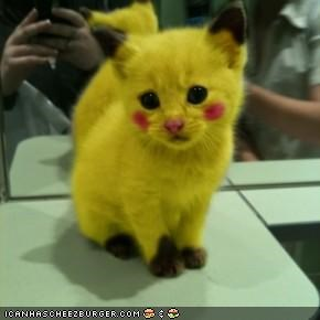I Choose You PIKATTCHU