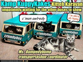 *HONK* Goin to Kamp!...ebenshually