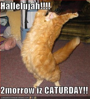 Hallelujah!!!!  2morrow iz CATURDAY!!