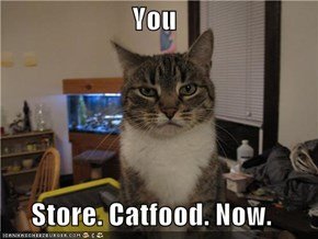 You  Store. Catfood. Now.