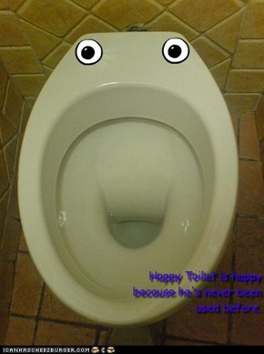 Happy Toilet is happy because he's never been used before.