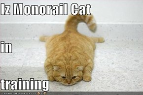 Iz Monorail Cat in training
