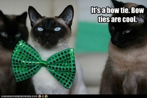 Cats and bow ties are cool