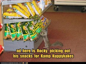 Kamp Kuppykakes Snacks