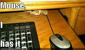 Mouse, I has it