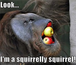 Look...  I'm a squirrelly squirrel!