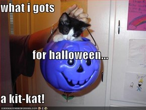 what i gots for halloween... a kit-kat!