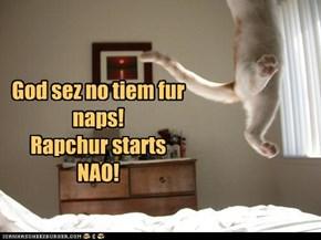 Rapchurd Kitteh!