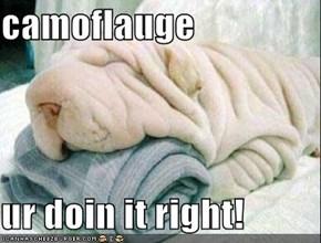 camoflauge  ur doin it right!