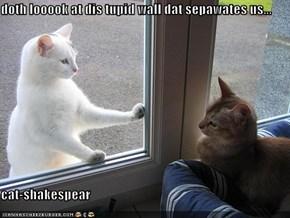 doth looook at dis tupid wall dat sepawates us...  cat-shakespear