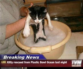 Breaking News - Kitty rescued from Plastic Bowl Ocean last night
