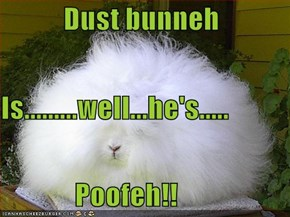 Dust bunneh  Is.........well...he's.....              Poofeh!!