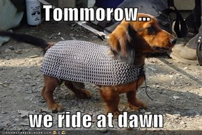 Tommorow...  we ride at dawn