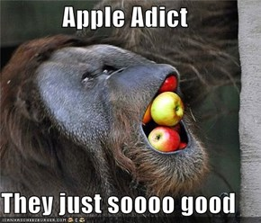Apple Adict  They just soooo good