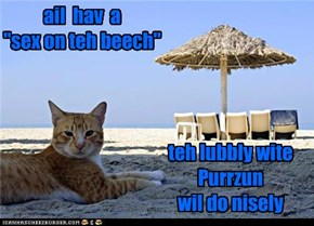 "ail  hav  a   ""sex on teh beech"""