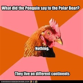 What did the Penguin say to the Polar Bear?