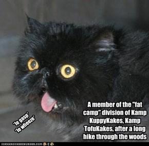 Kamp TofuKakes-A division of Kamp KuppyKakes
