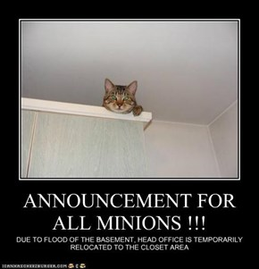 ANNOUNCEMENT FOR ALL MINIONS !!!