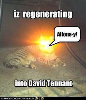 iz  regenerating
