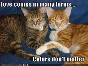 Love comes in many forms....  Colors don't matter