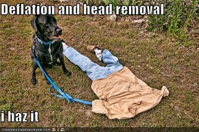Deflation and head removal  i haz it