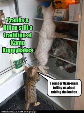 Pranks & Hijinx still a tradition at Kamp Kuppykakes
