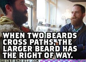 Hipster Law 019-B: Beard Traffic