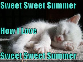 Sweet Sweet Summer How I Love  Sweet Sweet Summer