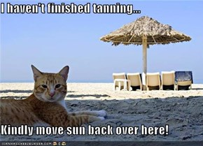 I haven't finished tanning...  Kindly move sun back over here!