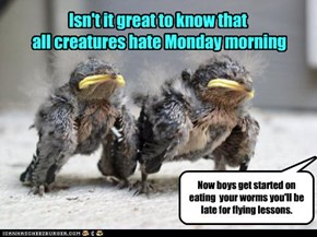 Isn't it great to know that  all creatures hate Monday morning