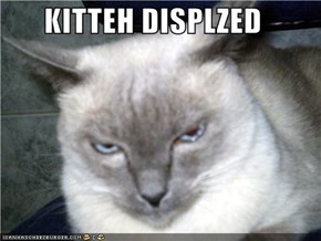 KITTEH DISPLZED
