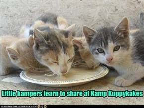 Little kampers learn to share at Kamp Kuppykakes