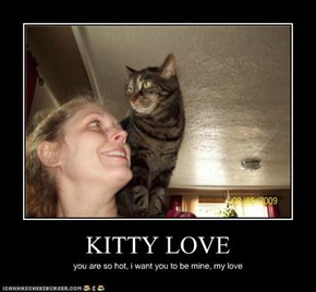 KITTY LOVE