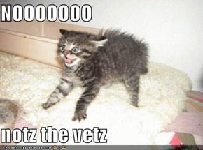 NOOOOOOO   notz the vetz