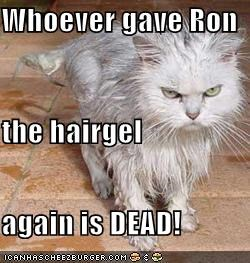Whoever gave Ron the hairgel again is DEAD!