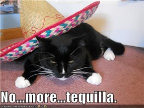 No...more...tequilla.