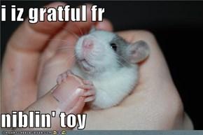 i iz gratful fr  niblin' toy
