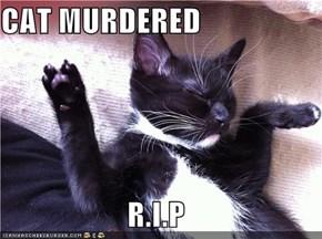 CAT MURDERED                      R.I.P